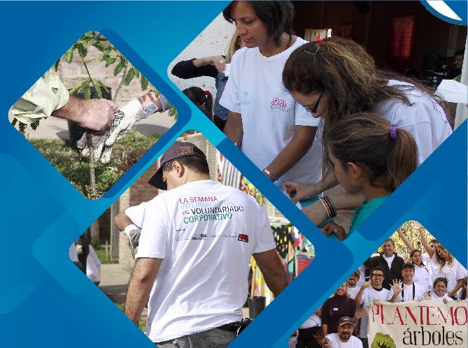 Programa Voluntariado Corporativo